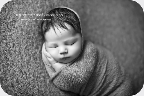 professional baby photography seattle washington